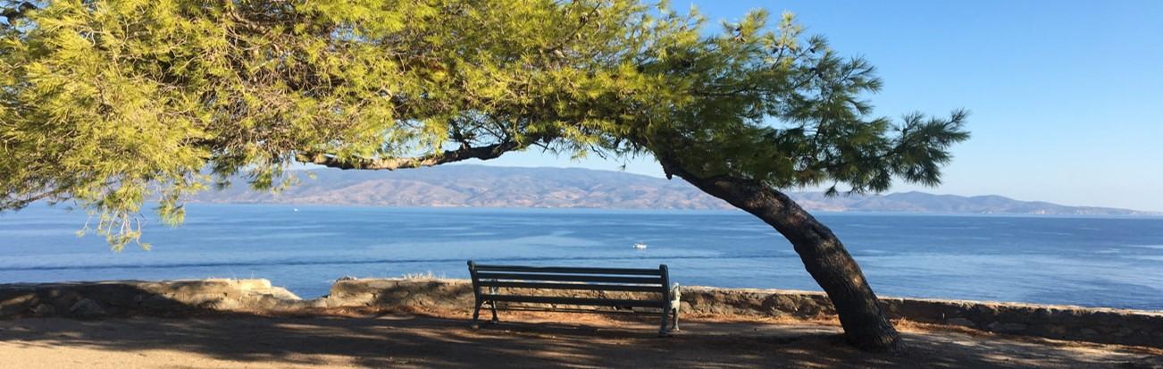Hydra Bench View Banner