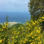 The view from Monte Epomeo on Ischia Island